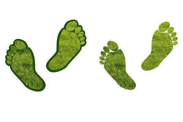 Reusable Event Cup Carbon Footprint